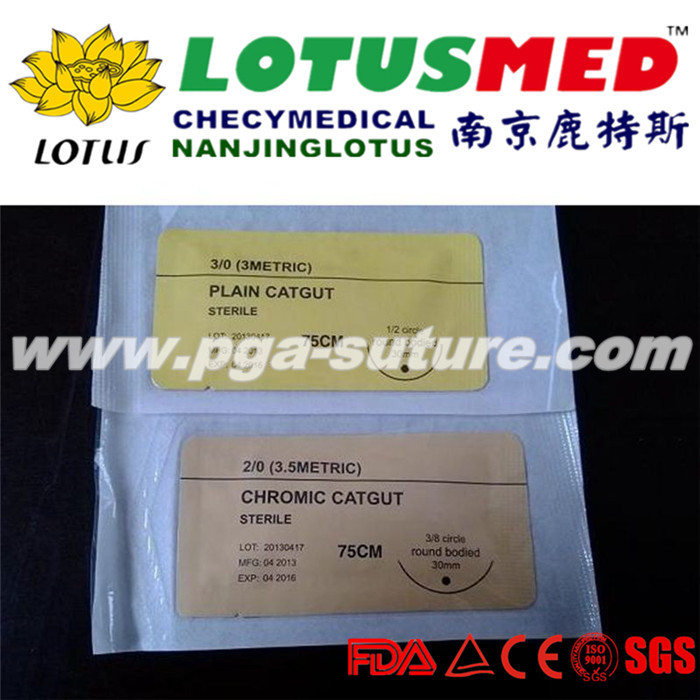 LOTUSMED Ethico Chromic catgut sutures