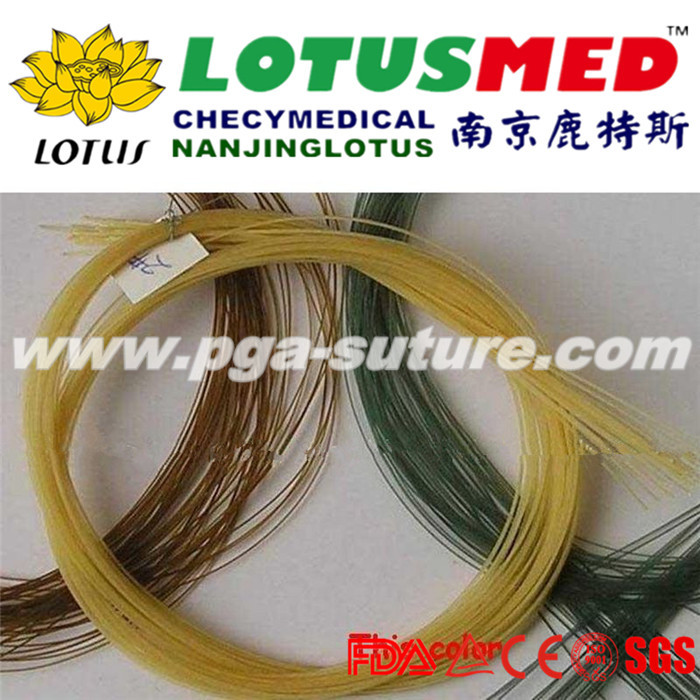LOTUSMED Ecosorb Chromic catgut sutures