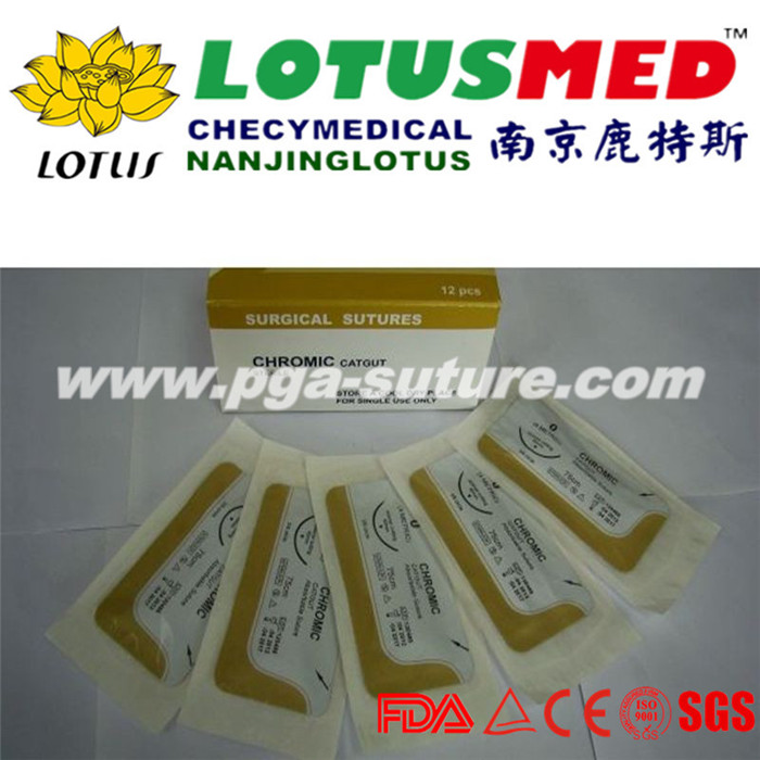 LOTUSMED Perfect Surgical Chromic catgut sutures