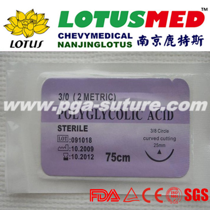 Veterinary polyglycolic acid suture