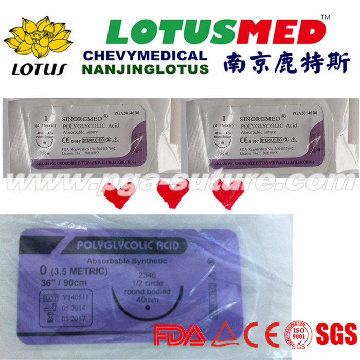 Polyglycolic Acid Rapid Suture With Needle
