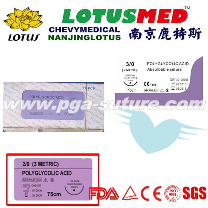 Surgical Use Medical Polyglycolic Acid Rapid Sutur...