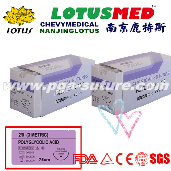 Surgical Use Polyglycolic Acid Rapid Suture