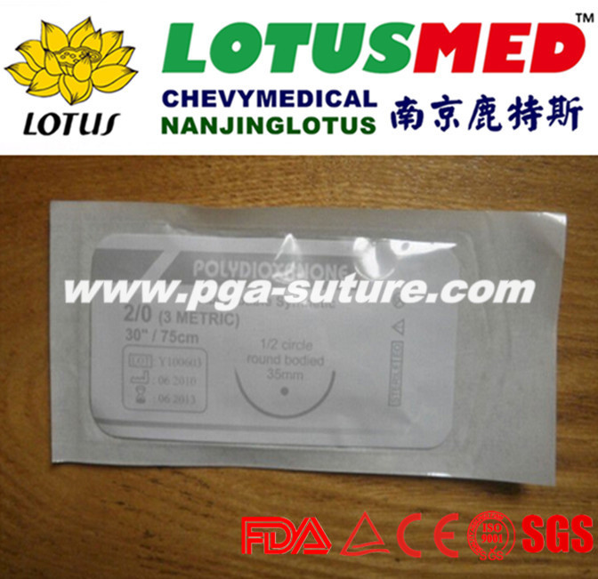 Absorable Sutures PDO