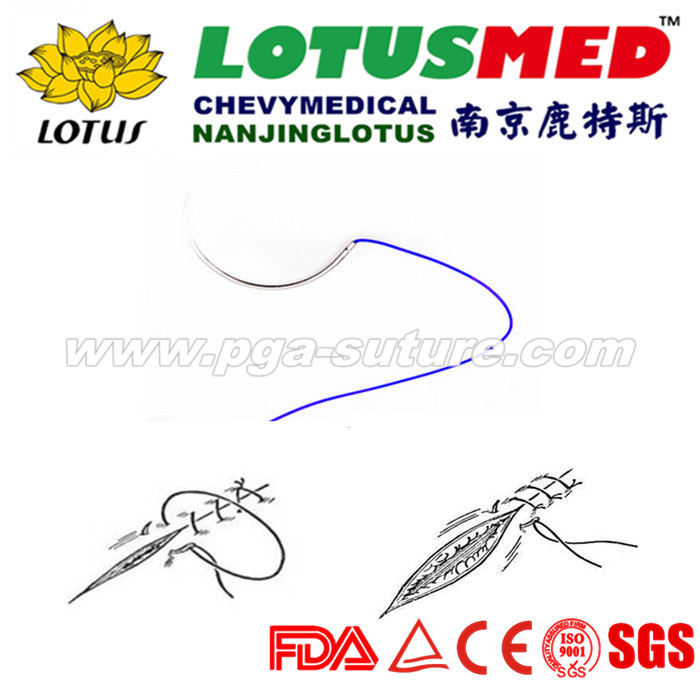 Disposable PDO Sutures