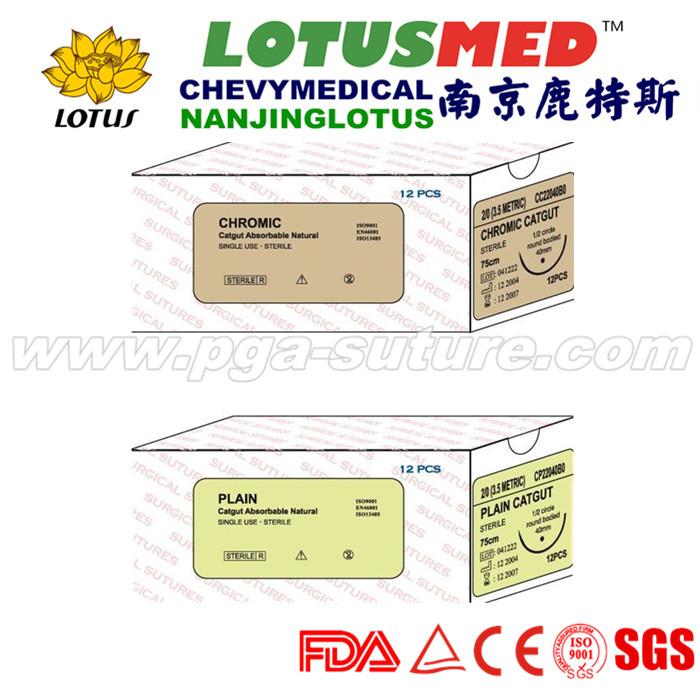 Disposable Absorbable plain catgut with needles