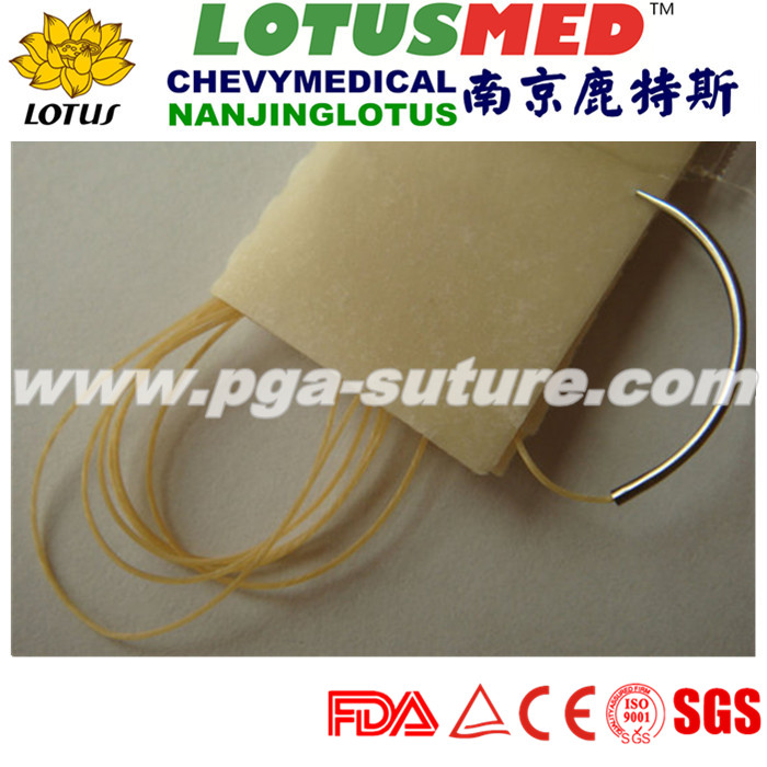 LOTSMED plain Catgut with needle manufacturer in C...