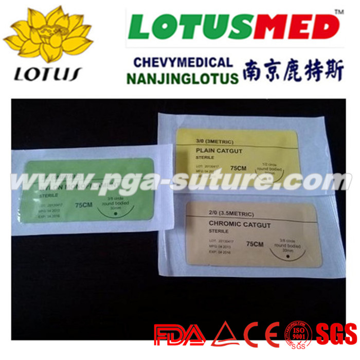 Perfect Surgical polypropylene suture