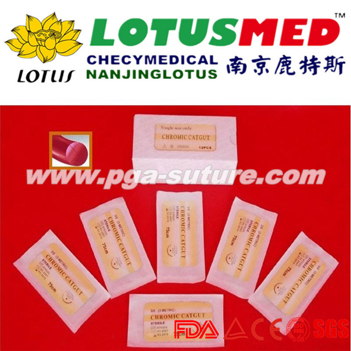 Perfect Surgical Chromic catgut sutures
