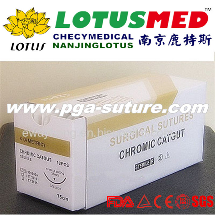 Surgical Chromic catgut sutures tray