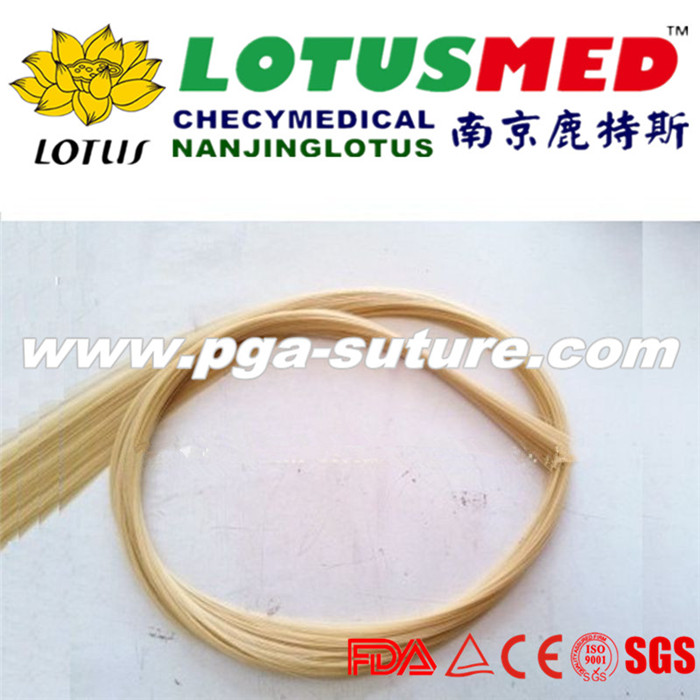Chromic Catgut (absorbable) Surgical Sutures
