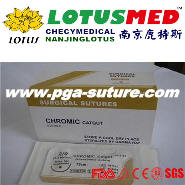 20、Chromic Catgut Surgical Suture