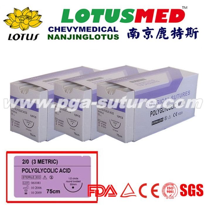 Nanjing LOTUS  Medical Polyglycolic Acid Rapid Sut...