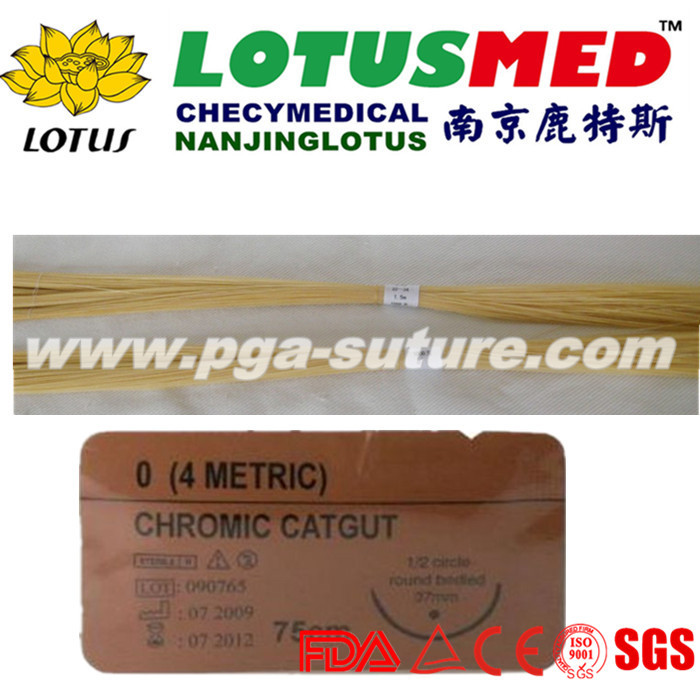 High Quality Chromic Catgut Materials