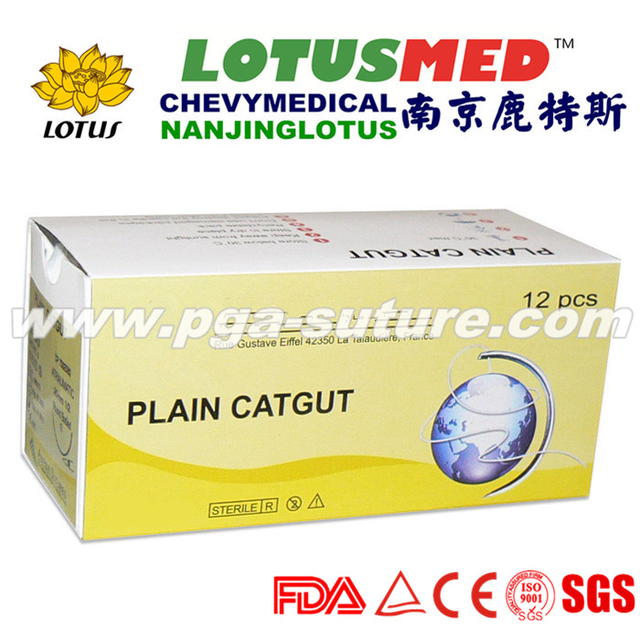Sterial surgical plain Catgut (Absorbable) Suture