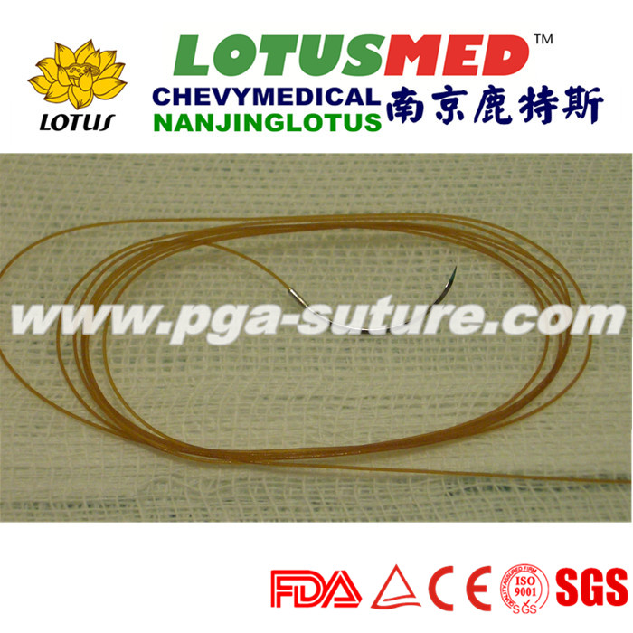 Finished Product Plain Catgut Sutures Manufacturer