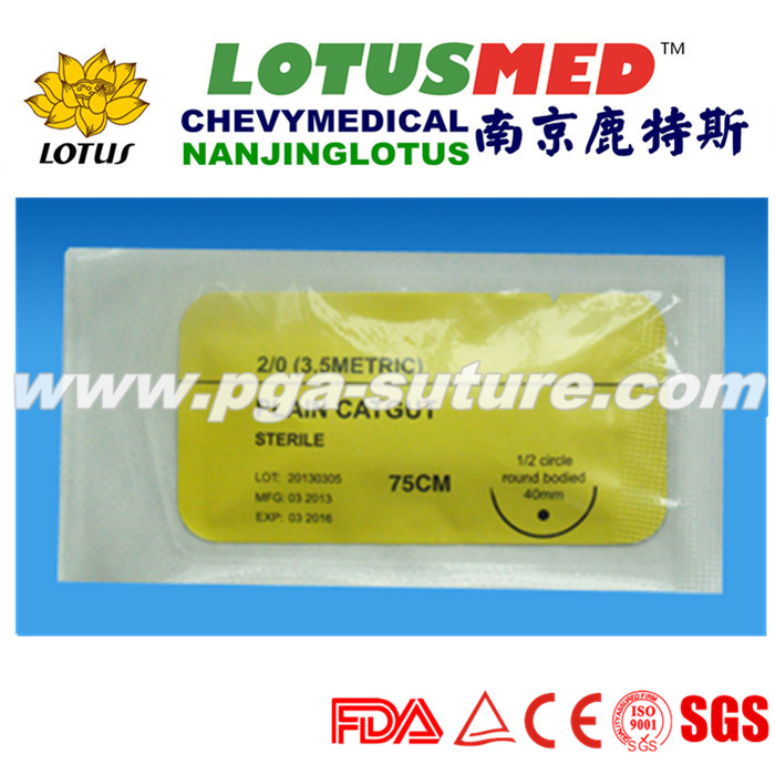 Absorbable China made Plain Catgut suture with nee...