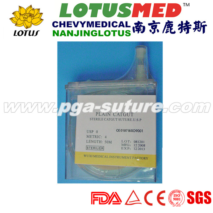 Disposable Natural Absorbable Surgical Plain Catgu...