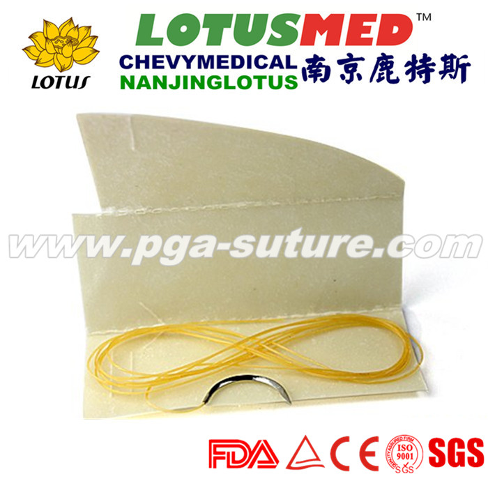 Natural Absorbable Plain Catgut Suture in Medical ...