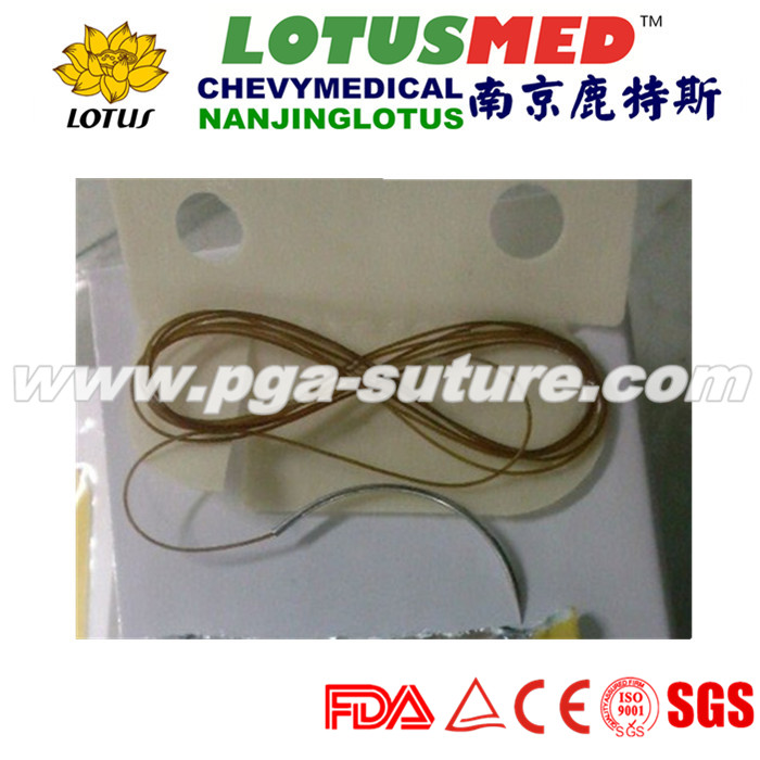 Plain catgut sutures