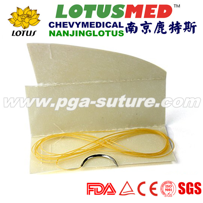Hot Sleas Plain Catgut sutures with/without needle...