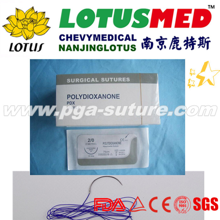 Absorbable suture with needle